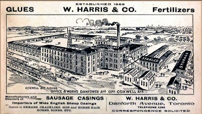 Harris Brothers & Business in Old Toronto